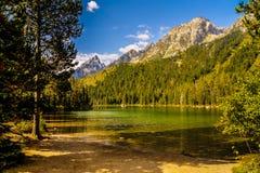 Parque nacional magnífico de Teton, Wyoming foto de archivo libre de regalías