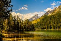 Parque nacional magnífico de Teton, Wyoming foto de archivo