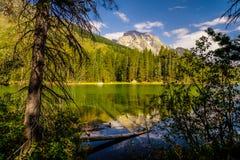 Parque nacional magnífico de Teton, Wyoming imagen de archivo