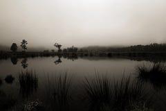 Parque nacional Nova Zelândia de Paparoa foto de stock