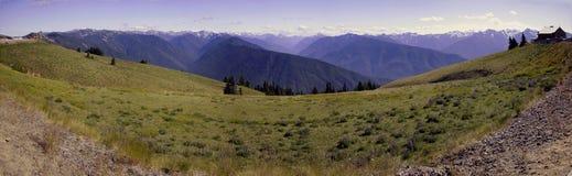 Parque nacional olímpico, panorama Imagen de archivo libre de regalías