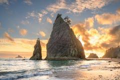 Parque nacional ol?mpico, Washington, EUA imagem de stock