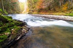 Parque nacional - paraíso eslovaco, Eslovaquia foto de archivo libre de regalías