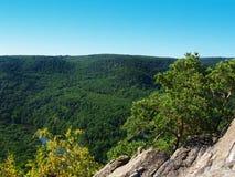Parque nacional Podyji Foto de Stock Royalty Free