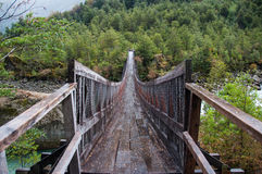 Parque Nacional Queulat, Carretera Austral, шоссе 7, Чили Стоковое Изображение
