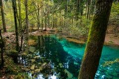 Parque nacional Rumania del beusnita del nerei de Cheile fotografía de archivo libre de regalías