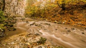 Parque nacional Rumania del beusnita del nerei de Cheile fotos de archivo