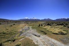 Parque Nacional Sajama Immagini Stock Libere da Diritti