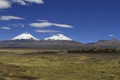 Parque Nacional Sajama Fotografia Stock
