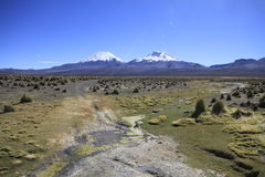 Parque Nacional Sajama. Outdoors in nature Royalty Free Stock Photography