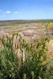 Parque nacional SD de los Badlands Foto de archivo libre de regalías