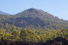 Parque nacional Teide El ir de excursión en el volcán Fotos de archivo