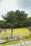 Parque Nacional Tierra del Fuego, Ushuaia fotos de archivo libres de regalías