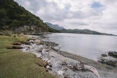 Parque Nacional Tierra del Fuego, Ushuaia imágenes de archivo libres de regalías
