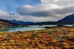 Parque Nacional Torres del Paine, Chile Royalty Free Stock Image
