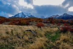 Parque Nacional Torres del Paine, Chili Photos libres de droits