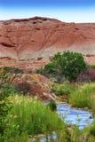 Parque nacional Utah de la montaña de Fremont del río del filón rojo del capitolio Fotos de archivo