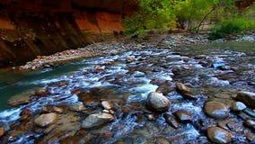 Parque nacional Utah de Zion almacen de metraje de vídeo