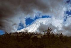 Parque Nacional Vicente Perez Rosales Fotografia de Stock Royalty Free