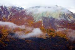 Parque nacional y reserva, opiniones de Kluane de la ladera imagen de archivo