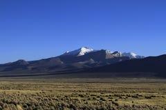 Parque National Sajama Bolivia Stock Images
