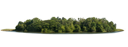 Parque natural bonito isolado com paisagem do jardim da grama verde Imagem de Stock Royalty Free