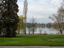 Parque natural cerca del lago Foto de archivo libre de regalías