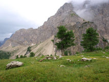 Parque natural da montanha Fotografia de Stock