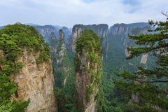 Parque natural das montanhas do Avatar de Tianzi - Wulingyuan China imagens de stock