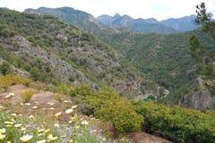 Parque natural de las sierras de Tejeda cerca de Frigliana en Andalucía fotografía de archivo libre de regalías