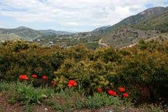 Parque natural de las sierras de Tejeda cerca de Frigliana en Andalucía foto de archivo libre de regalías