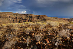 Parque Natural de Pilancones em Gran Canaria Foto de Stock Royalty Free