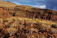Parque Natural de Pilancones em Gran Canaria Foto de Stock
