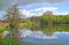 Parque natural de Schwalm-Nette, Nettetal, Alemanha foto de stock