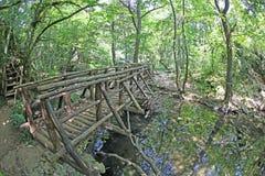 Parque natural de Strandja, Bulgária Imagens de Stock Royalty Free