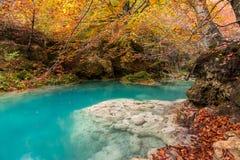 Parque natural de Urederra Fotos de archivo libres de regalías