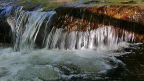 Parque natural de Vitosha perto de Sófia, Bulgária A área dourada das pontes Paisagem do córrego da água video estoque