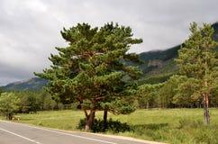 Parque natural nacional del estado Imagen de archivo libre de regalías