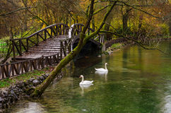 Parque natural perto de Sarajevo Imagens de Stock Royalty Free