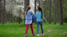 Parque natural puro na primavera A menina dois caucasiano pequena vai a pé com guitarra à disposição no trajeto de floresta Conce filme