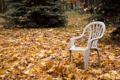 Parque negligenciado Foto de Stock Royalty Free