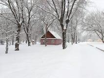 Parque nevado fotografia de stock