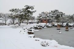 Parque Nevado Imagen de archivo libre de regalías