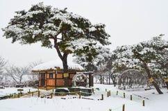 Parque Nevado Imagen de archivo