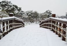 Parque Nevado Fotografía de archivo libre de regalías