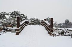 Parque Nevado Fotografía de archivo