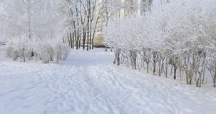 Parque nevado de la ciudad metrajes