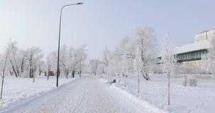 Parque nevado de la ciudad almacen de video