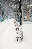 Parque nevado del invierno Fotografía de archivo libre de regalías
