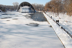 Parque nevado del invierno, pájaros. imagen de archivo